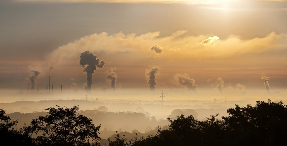 Global carbon intensity decreased 50% since 1990